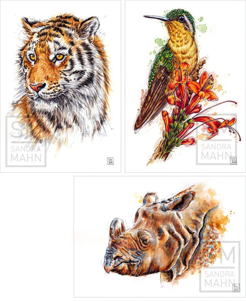 Kolibri (verkauft) - Tiger (verkauft) - Nashorn | hummingbird (sold) - tiger (sold) - rhinoceros