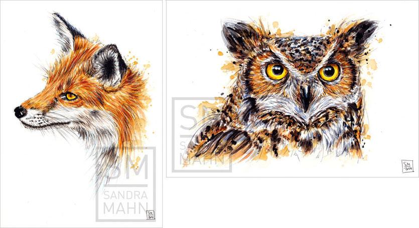 Fuchs (verkauft) - Uhu (verkauft) | red fox (sold) - eagle-owl (sold)