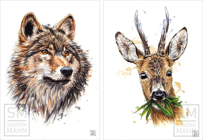 Wolf (verkauft)  - Rehbock (verkauft) | wolf (sold) - roe buck (sold)