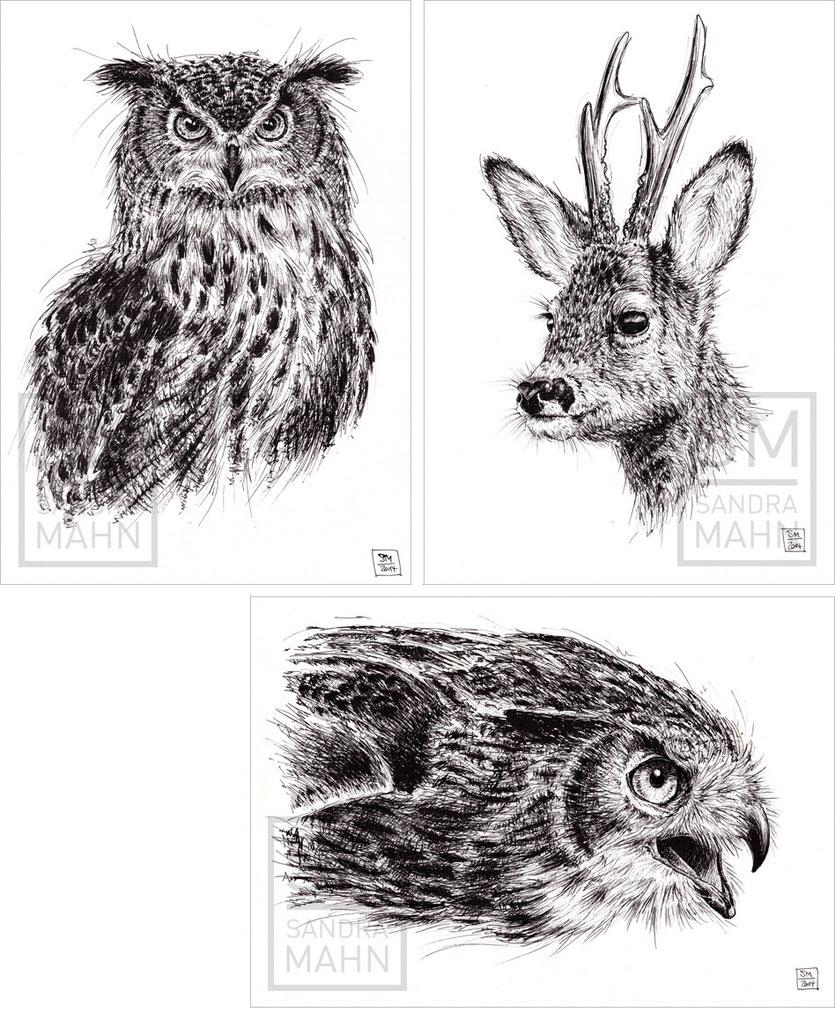 FINELINER ART   Uhu (verkauft) - Rehbock (verkauft) - Uhu | eagle-owl (sold) - deer (sold) - eagle-owl