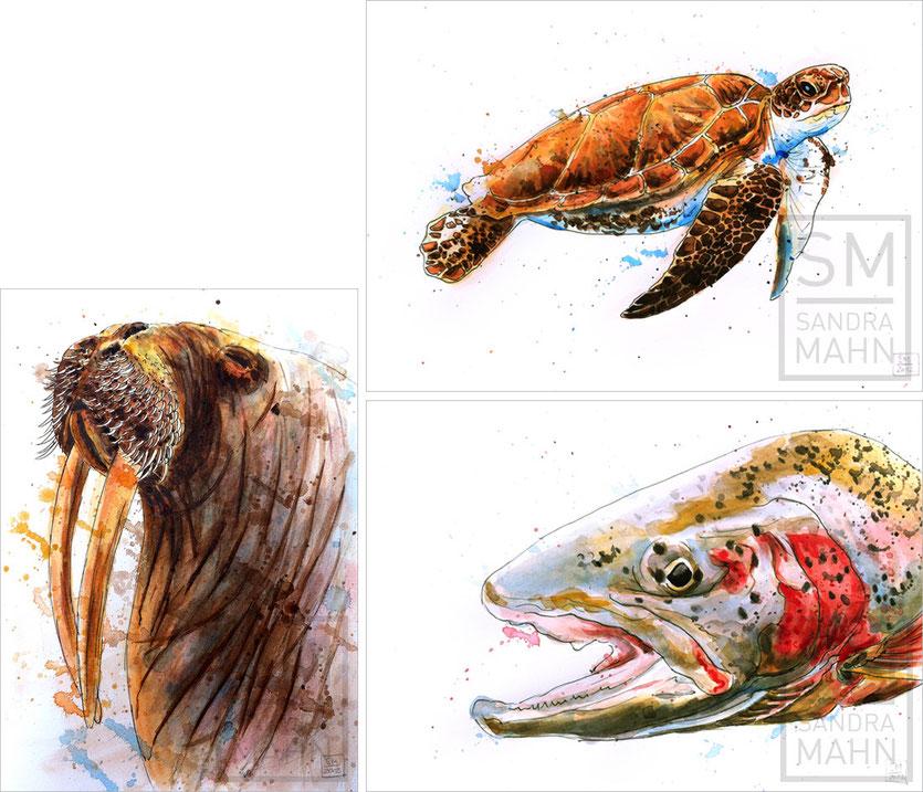Walross (verkauft) - Schildkröte (verkauft) - Regenbogenforelle (verkauft) | walrus (sold) - turtle (sold) - rainbow trout (sold)