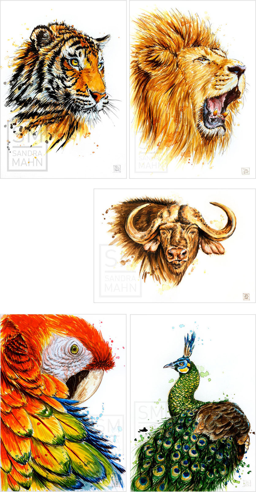 Tiger (verk.) - Löwe (verk.) - Kaffernbüffel - Papagei (verk.) - Grüner Pfau (verk.) | tiger (sold) - lion (sold) - african buffalo - macaw (sold) - green peacock (sold)