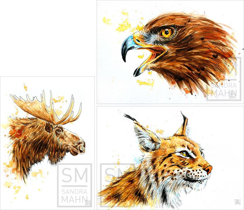 Elch (verkauft) - Adler (verkauft) - Luchs (verkauft)| moose (sold) - eagle (sold) - lynx (sold)