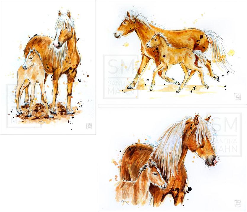Haflinger Pferde | avelignese horses