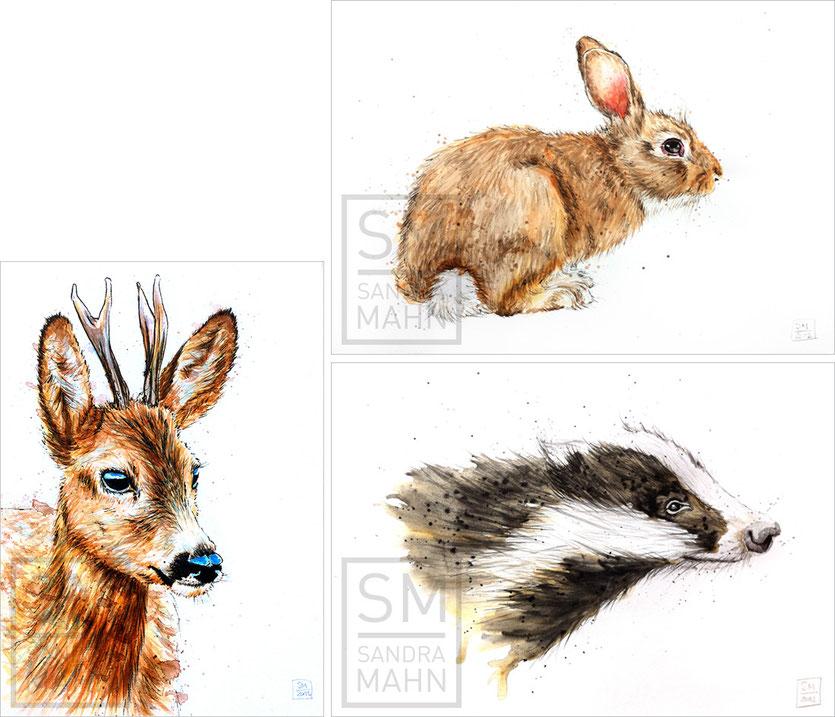 Rehbock (verkauft) - Kaninchen (verkauft) - Dachs (verkauft) | roe buck (sold) - rabbit (sold) - badger (sold)