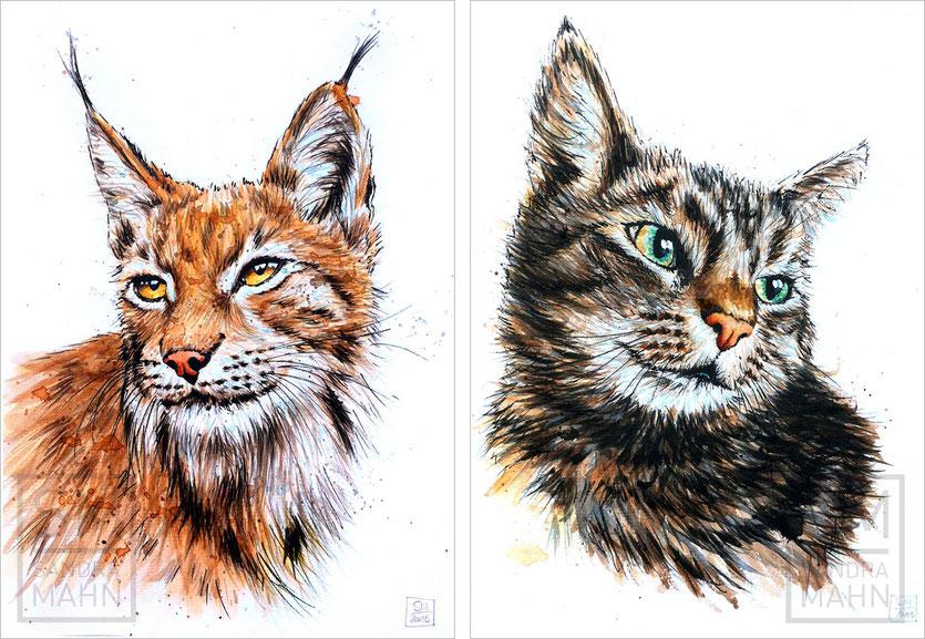 Luchs (verkauft) - Katze (verkauft) | lynx (sold) - cat (sold)