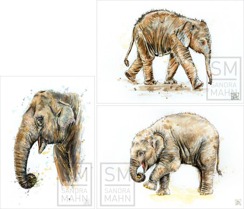 Elefant (verkauft) - Elefant (verkauft) - Elefant (verkauft) | elephant (sold) - elephant (sold) - elephant (sold)