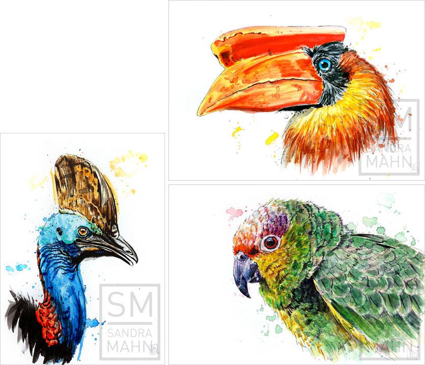 Kasuar (verkauft) - Nashornvogel (verkauft) - Papagei (verkauft) | cassowary (sold) - hornbill (sold) - macaw (sold)