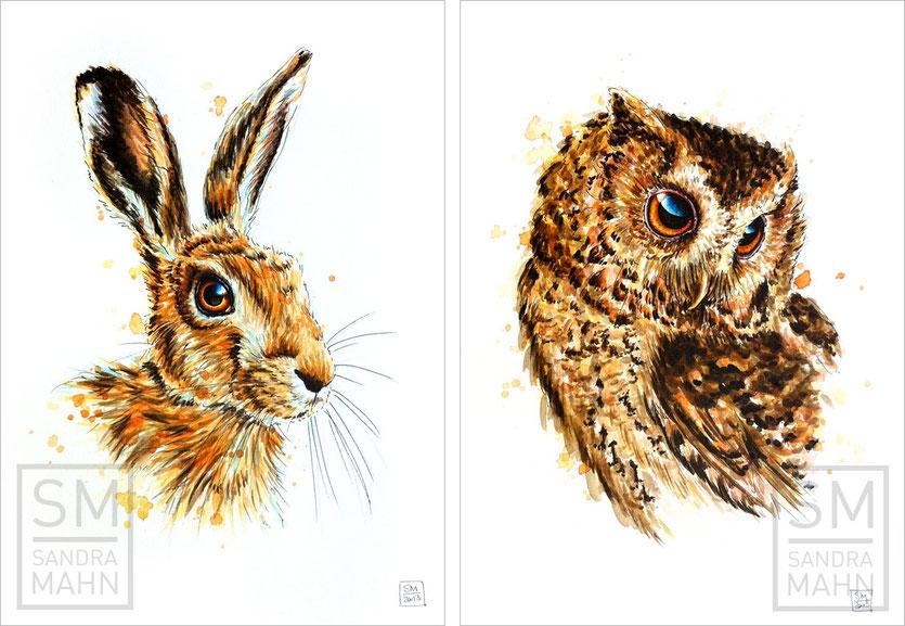Feldhase (verkauft) - Eule (verkauft) | european hare (sold) - owl (sold)