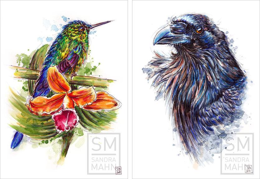 Kolibri (verkauft) - Rabe | hummingbird (sold) - raven