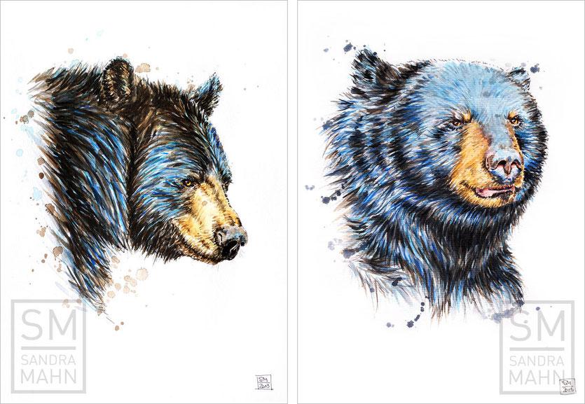 Schwarzbär (verkauft) - Schwarzbär (verkauft) | american black bear (sold) - american black bear (sold)