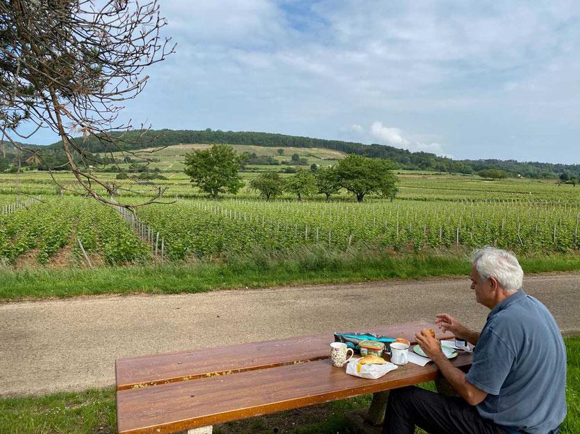Picknick Route des Grand Cru Burgund