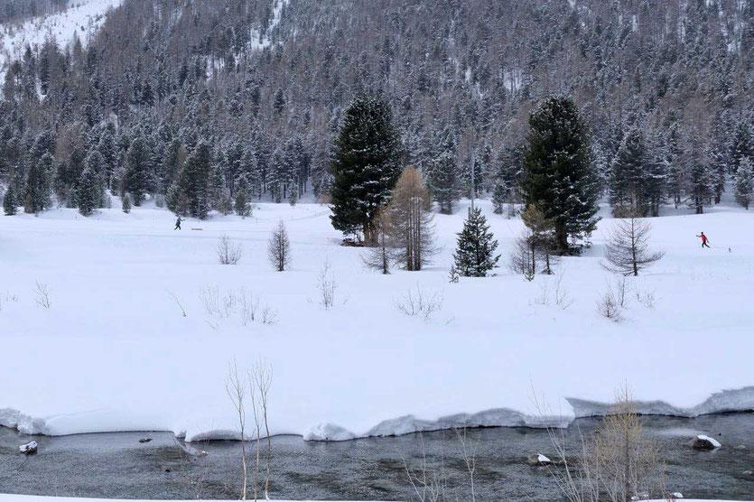 Langlaufloipe Berninabach Morteratsch Val Bardena Engadin St. Moritz