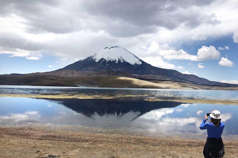 Chile Nationalpark Lauca Lago Chungará mit Volcán Parinacota
