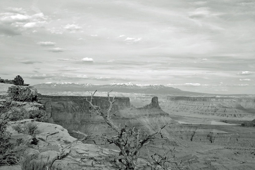 Grand View Point, Island in the Sky, Canyonlands NP