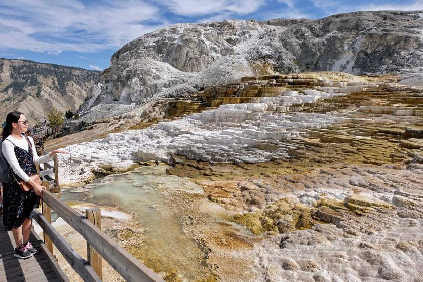 Stege Sinterterrassen Mammoth Hot Springs