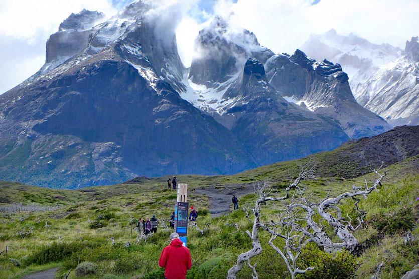 Wanderweg Sendero Mirador Cuernos zum Nordenskjöld See, Torres del Paine