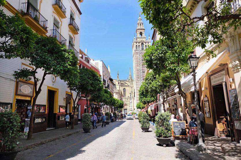 Die Tapas Straße Calle Mateos Gago Kathedrale Sevilla