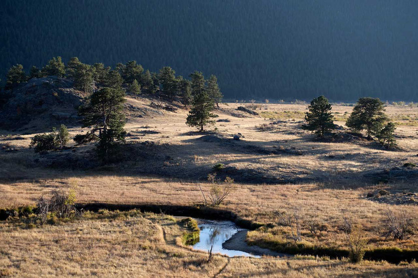 Blick vom Hügel des Campingplatz Moraine Park Rocky Mountain