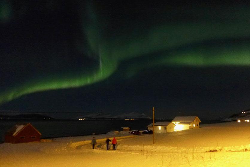Nordlicht Polarlicht Lyngen Alpen Norwegen