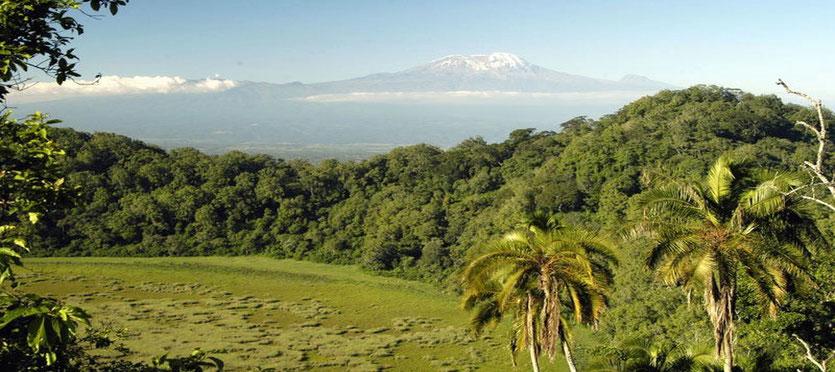 Ngurdoto Krater Wanderung Arusha Nationalpark Tansania