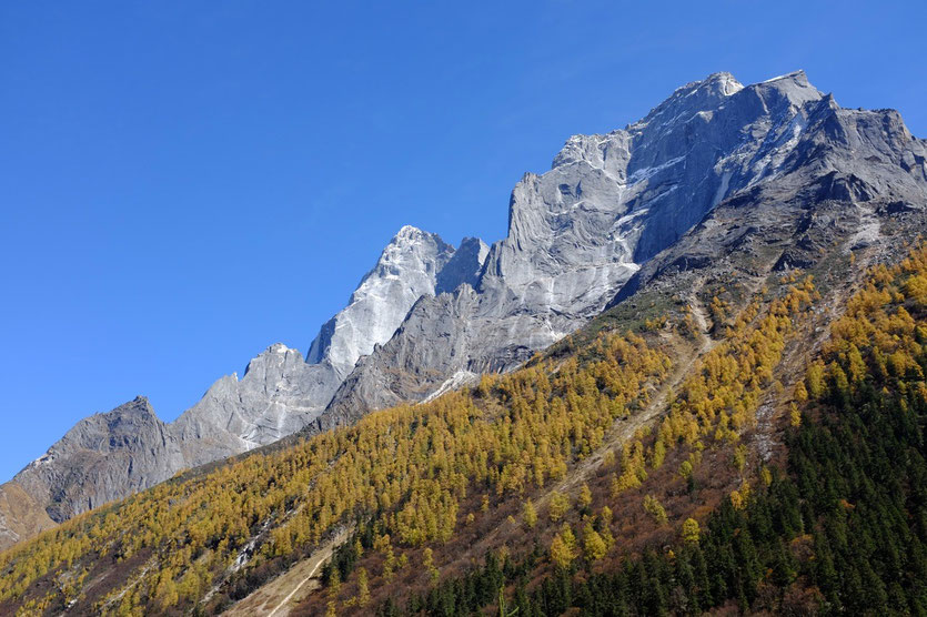 Shuangqiao Valley (双桥沟), Mount Siguniang Nature Reserve