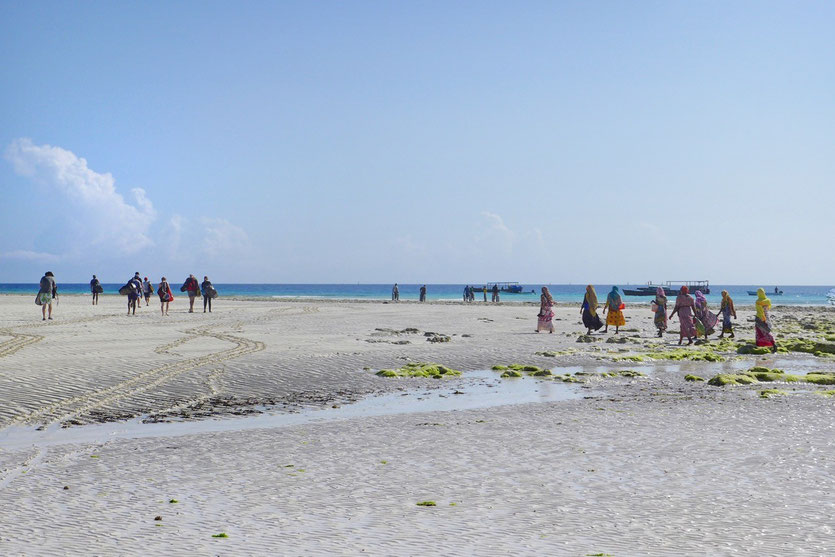 Scuba Diving snorkling tour Zanzibar east coast