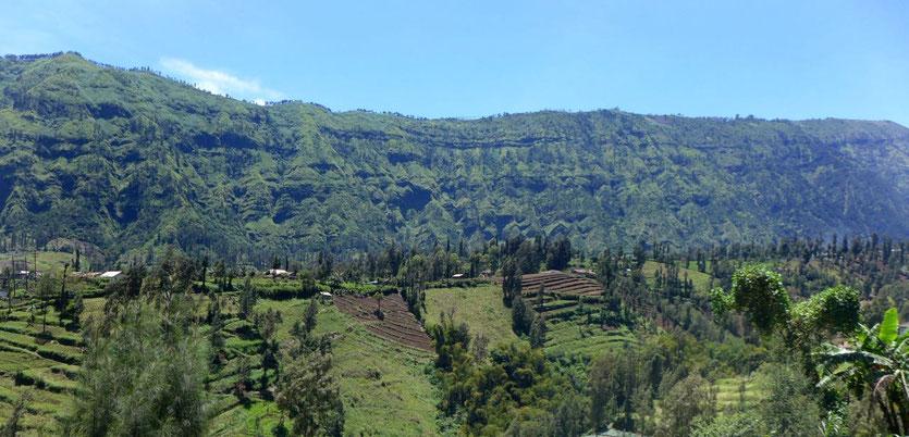 Cemoro Lawang  Bromo Dörfer