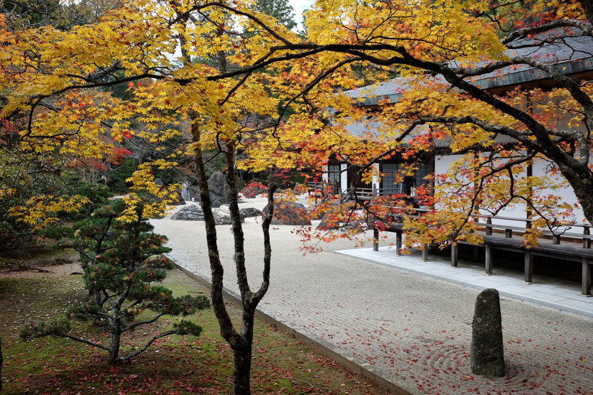 Koyasan Highlights Tempel Steingarten Herbstfärbung foliage