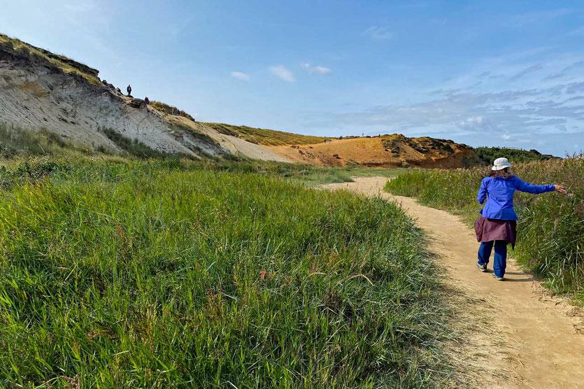 Morsum-Kliff Wanderung Sylt