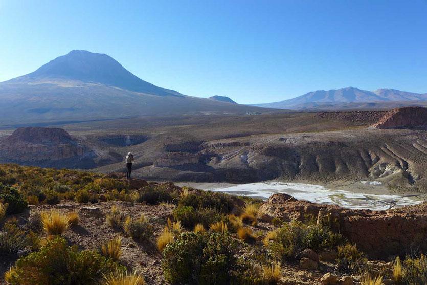 Quebrada de Aroma Flussbett Altiplano