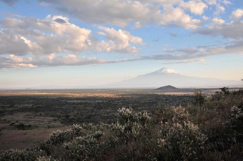 Kilimandscharo Bick vom Schumata Camp Kilimanjaro