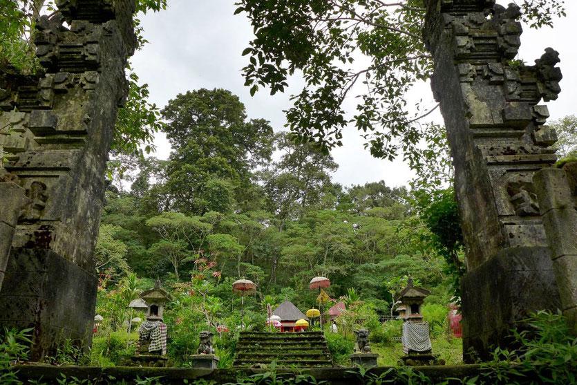 Munduk Vulkan Seen Wanderung Aktivitäten Bali