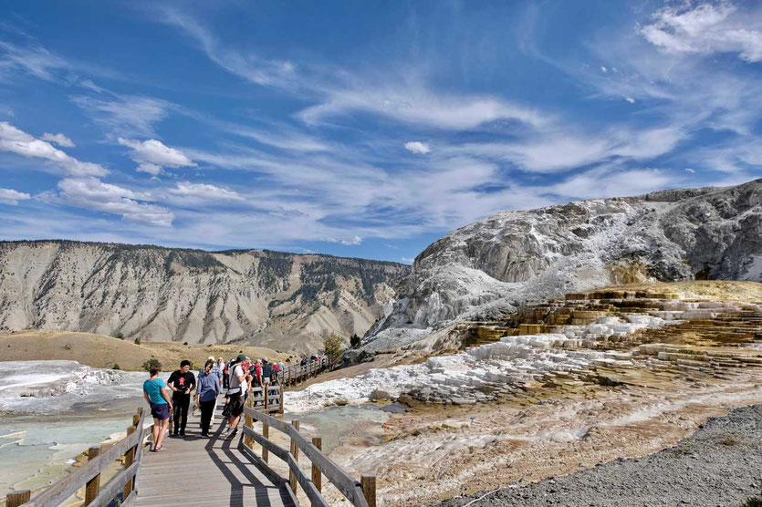 Boardwalk Mammoth Hot Springs Yellowstone