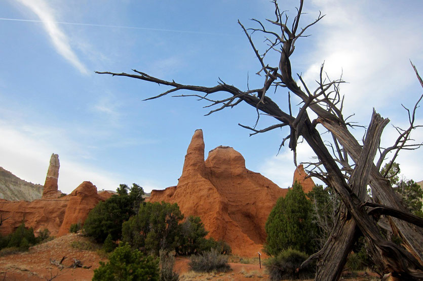Kodrachrome Nature Trail Wanderung USA Südwesten Nationalparks