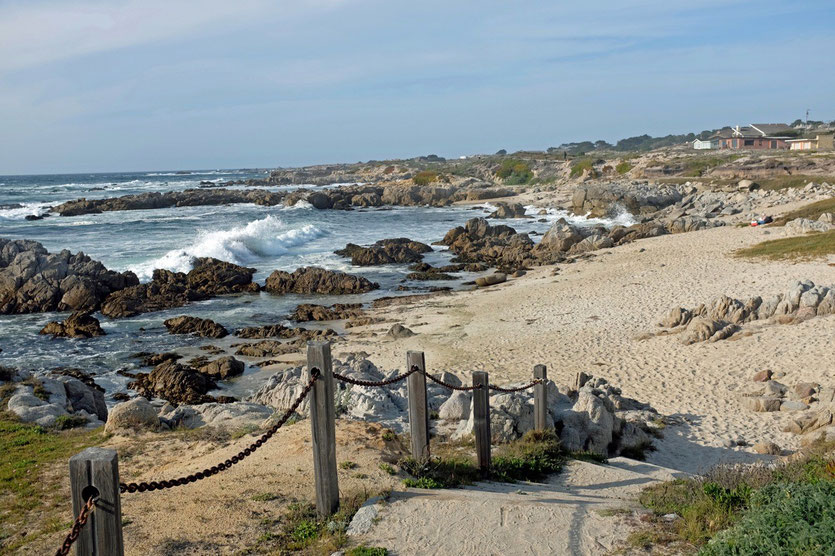 Coastal Trail  Pacific Grove