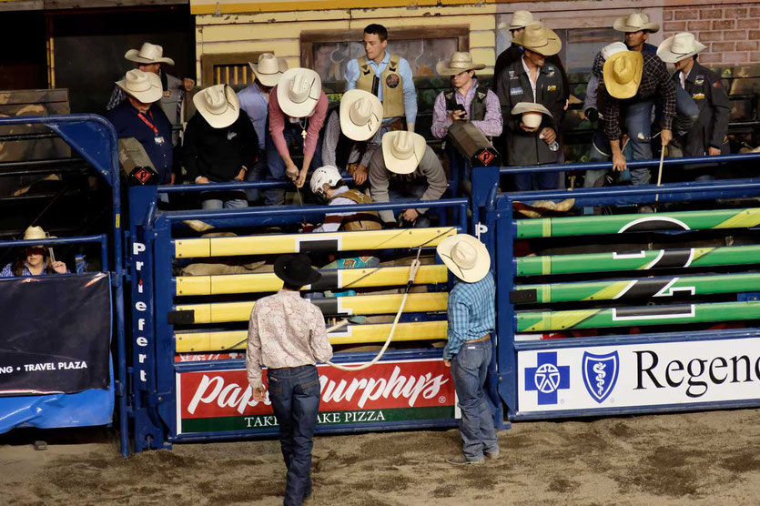 Box Bull Riding Rodeo im Happy Canyon Pendleton Oregon USA