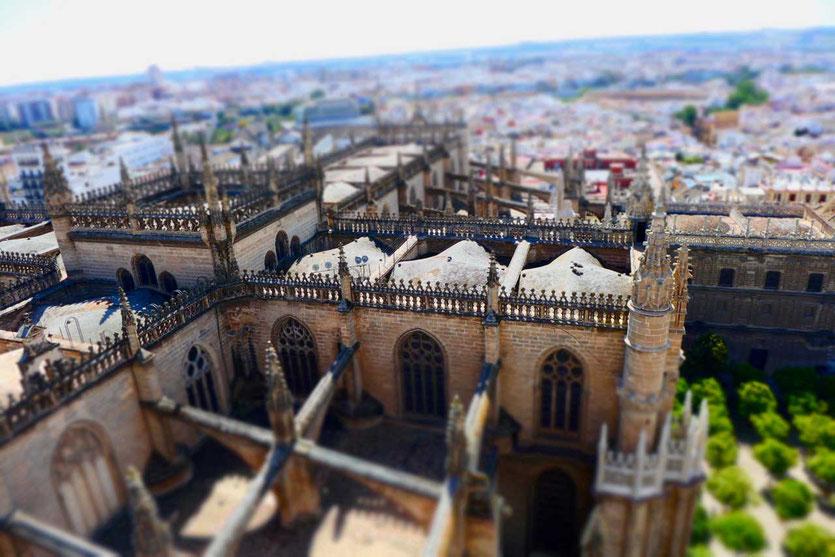 Kathedrale Sevilla Blick vom Glockenturm Giralda