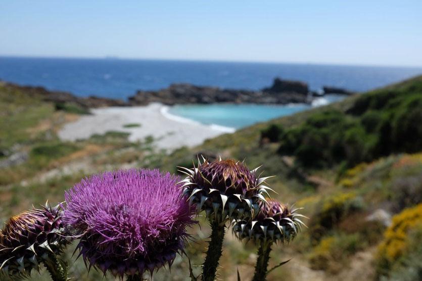 Beach near Vathia  Mani Peloponnese
