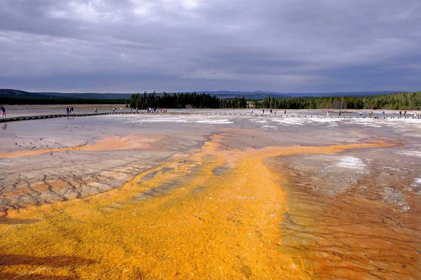 Yellowstone Grand Prismatic Spring Boardwalk
