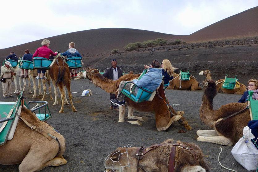 Kamelausritt Tour 'Echadero de los Camellos' Timanfaya Nationalpark Lanzarote