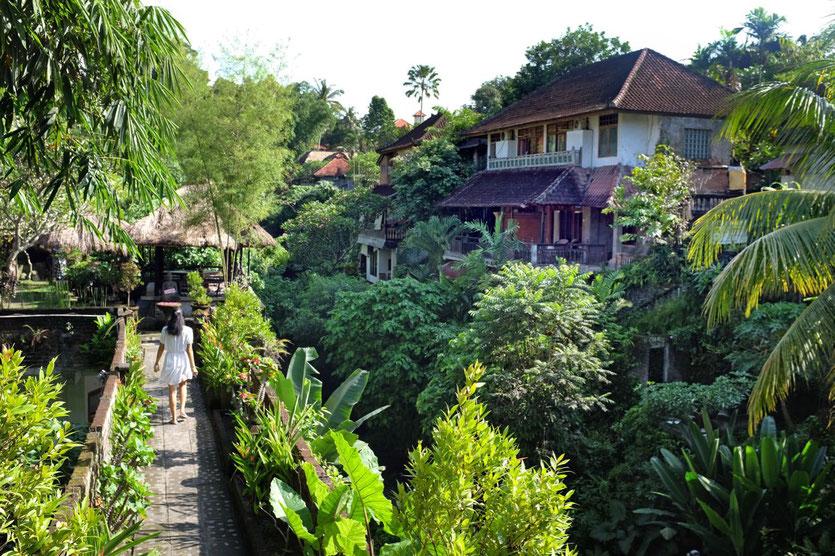 Ubud city