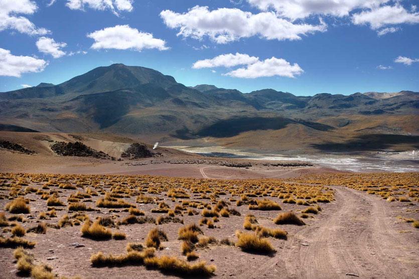 Geysirfeld  El Tatio auf 4.300m