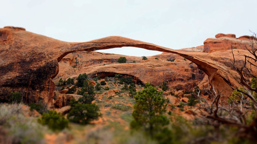 Landscape Arch, Arches National Park USA Südwesten