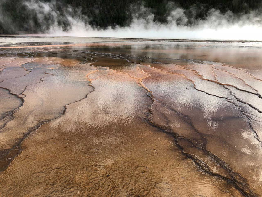 Kalkstufen Grand Prismatic Spring Yellowstone