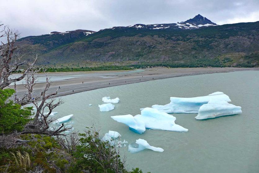 Strandblick Eisbrocken Lago Grey, Torres del Paine