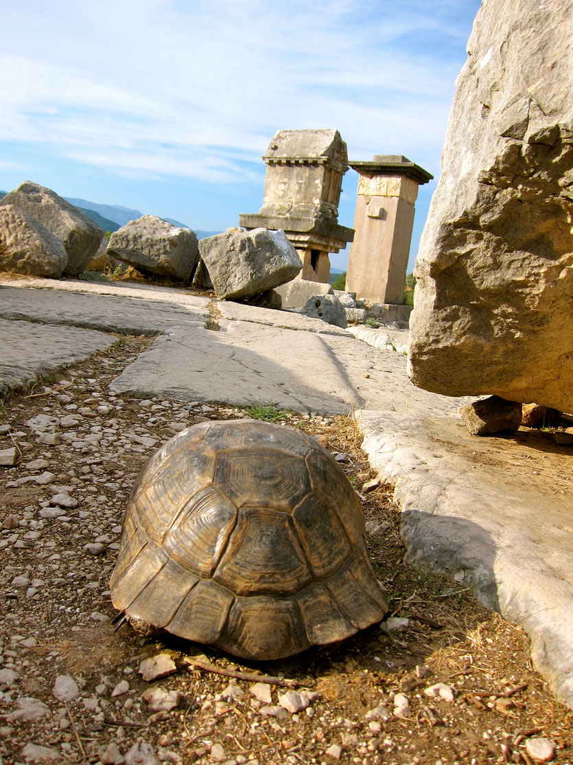 Xanthos Türkei Unesco Weltkulturerbe, Lykische Küste