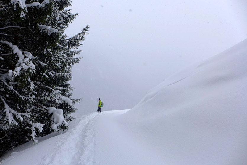 Schneeschuhwanderungen Leogang