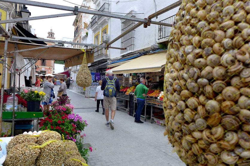 Um die Plaza de San Roque finden wir einen Morgenmarkt