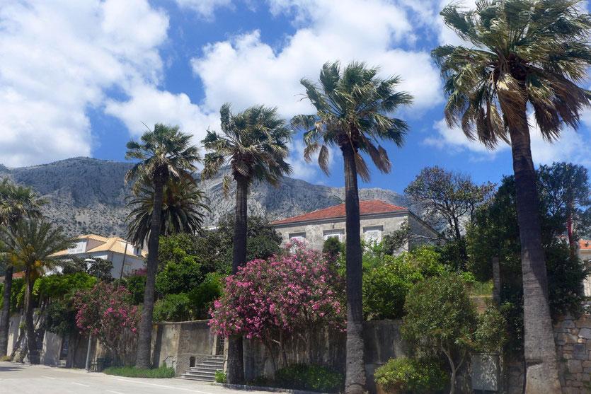 Orebic Stadt der Kapitänsvillen Insel Peljesac Kroatien